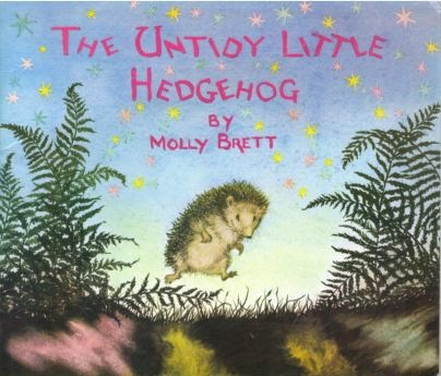 The Untidy little Hedgehog