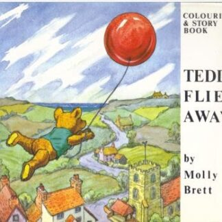 Teddy Flies Away (verkocht)