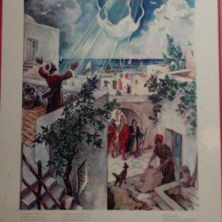 """Bellarminus-bijbelplaten nr.59""""Visioen van Petrus"""""""